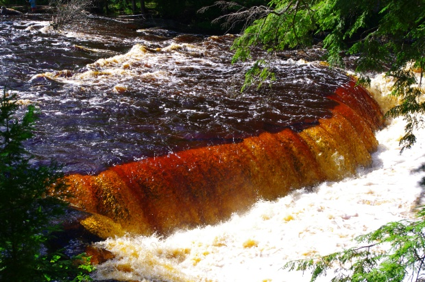 Rootbeer brown water cascades over the Tahquamenon Falls in Paradise, Michigan.